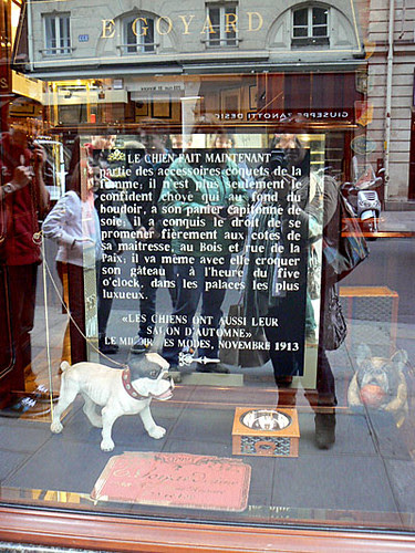 le chien chez Goyard.jpg