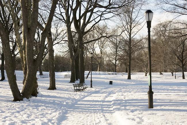 Snowy Prospect Park, Brooklyn