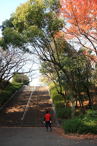 Osaka Castle Garden, Japan