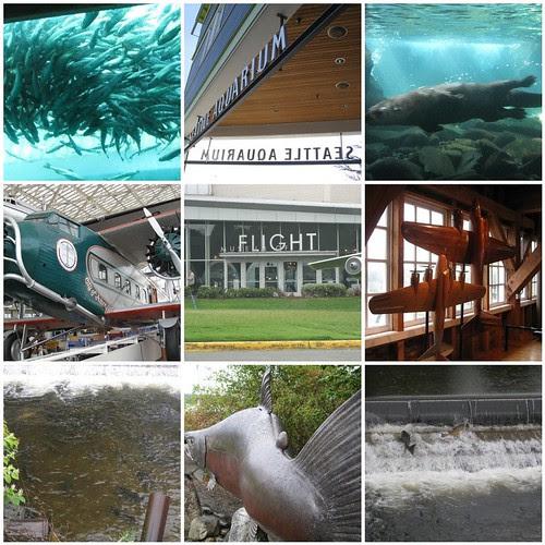 Seattle2010