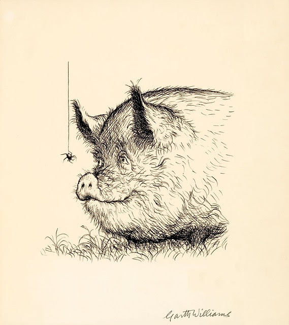 ink sketch of jovial pig admiring spider on web