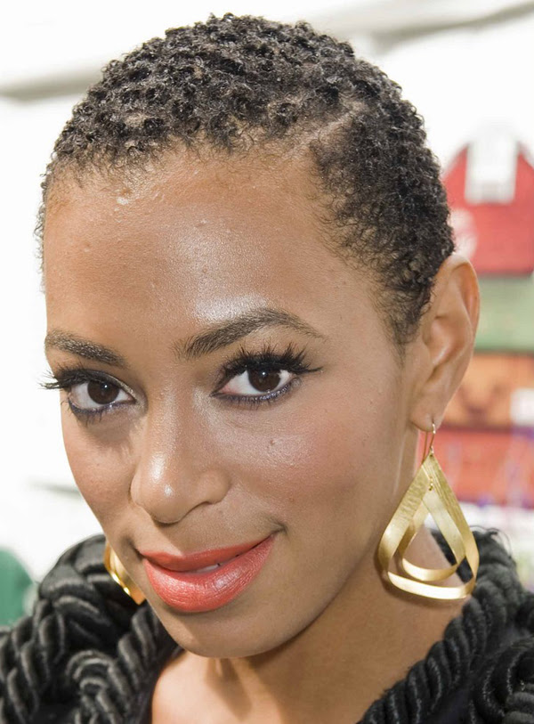 Top Image Of Solange Hairstyles Natural Modern Hairstyles