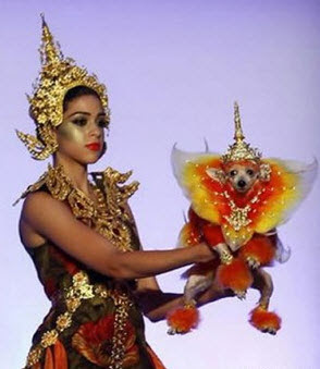 3 18 2011 1 56 35 PM Indian Villagers Worship Dog God, Not Palindromes picture