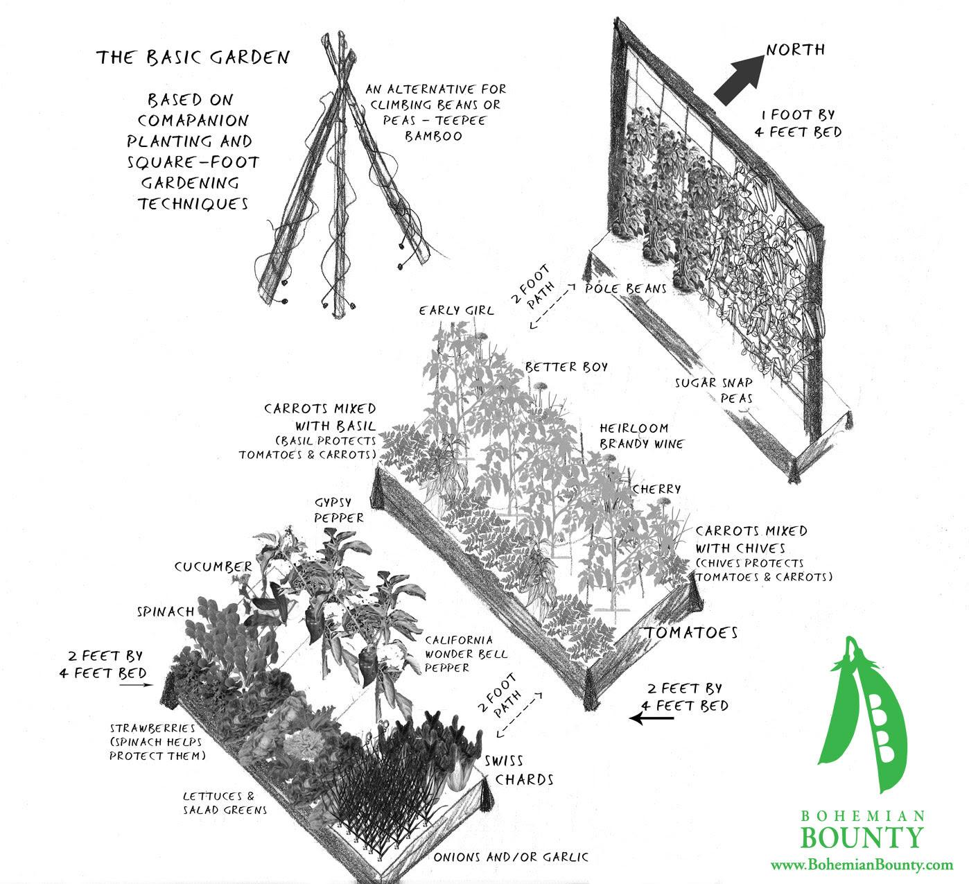 Vegetable Garden Design Examples | House Beautiful Design