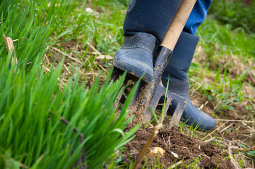 Vrtnarjenje