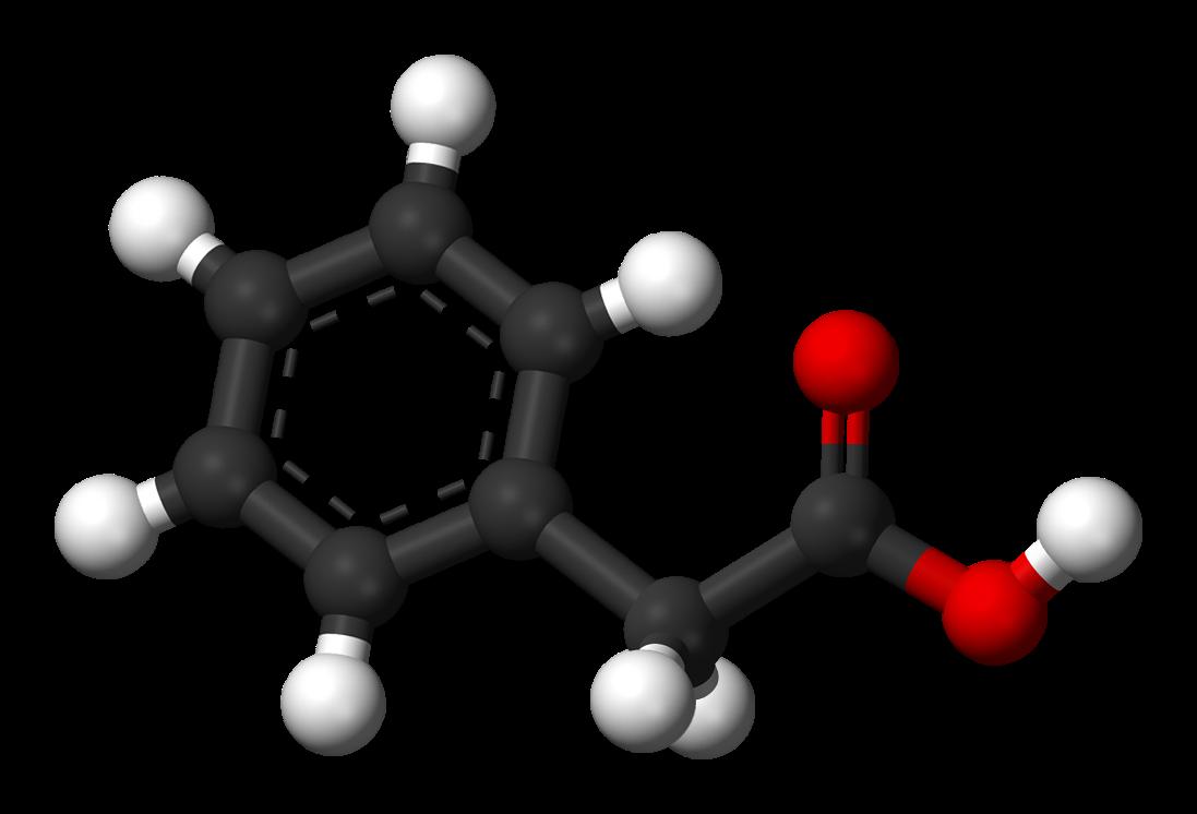 Stereoselectivity matters in methamphetamine