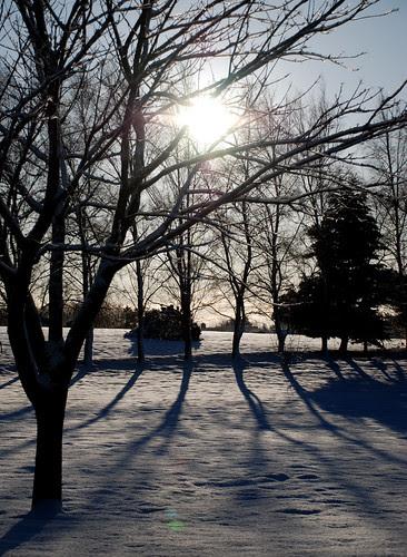 December shadows