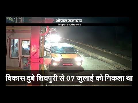 विकास दुबे 7 जुलाई को मध्य प्रदेश की सीमा में दाखिल हो गया था, शिवपुरी से निकला था (वीडियो देखिए) / MP NEWS