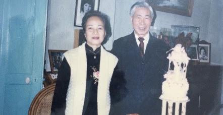 ngoại giao, bộ trưởng, hai cha con