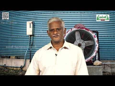 11th Basic Electrical Engineering மாறு திசை மின்னாக்கி அலகு 8 பகுதி 3 Kalvi TV