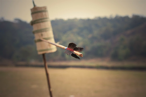Gamler's Arrow by Seema Krishnakumar on Flickr