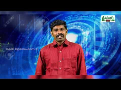 5th Science ஒளிச்சேர்க்கை-விலங்குகளின் தகவமைப்பு நாள் 7, 8 Kalvi TV