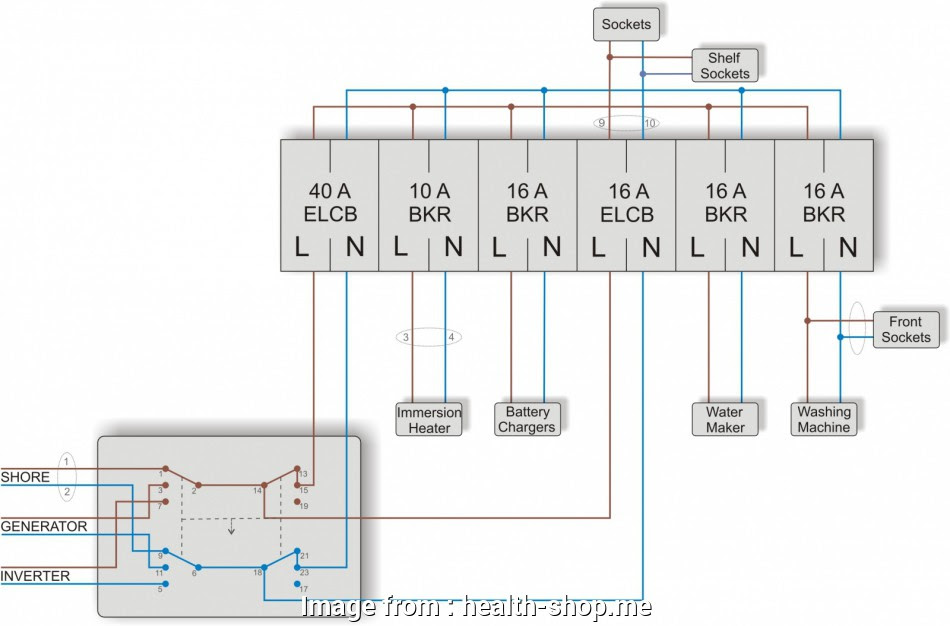 Diagram Double Throw Toggle Switch Wiring Diagram Full Version Hd Quality Wiring Diagram Circutdiagram Gtve It