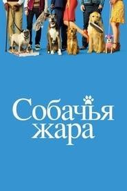 Kánikula online magyarul videa letöltés uhd blu ray 2001
