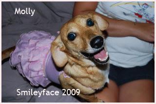 25-Molly---2