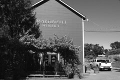 Martinelli Winery - Wine center