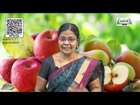 11th  Nutrition உணவூட்டவியலின் அண்மை நிலைப்பாடுகள் அலகு 7  பகுதி 1 Kalvi TV