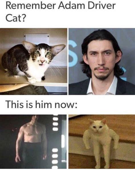 Fresh Memes, part 2   Fun