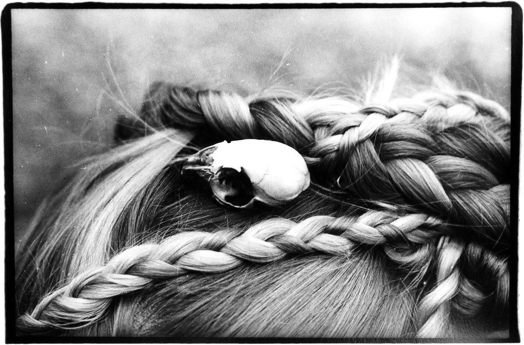 Rodent Skull in Hair Landscape