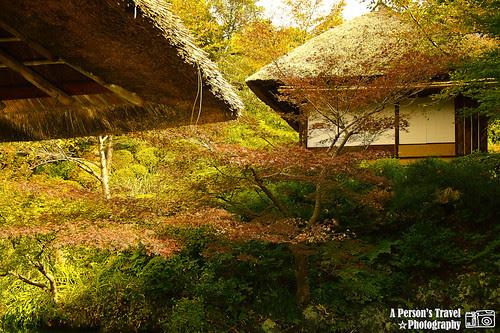 2011Kyoto_Japan_ChapSix_15