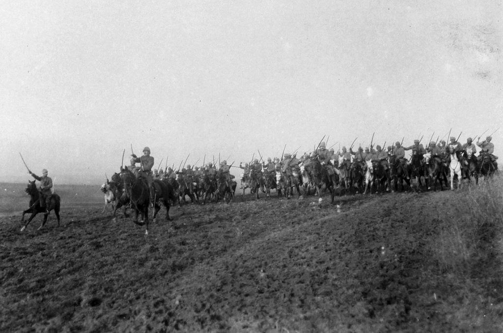 Os animais também lutaram na Primeira Guerra Mundial 11