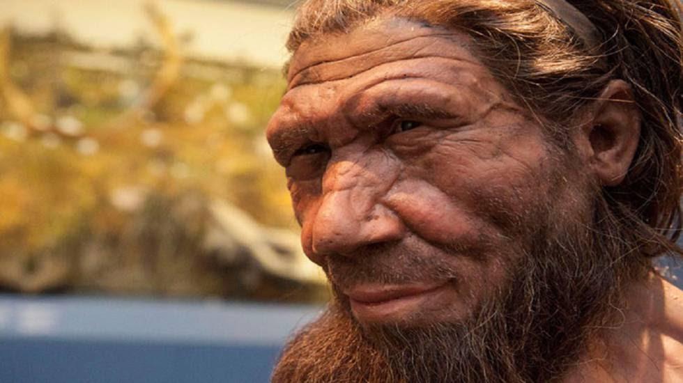 Reconstrucción de un neandertal en el Museo de Historia Natural de Londres.