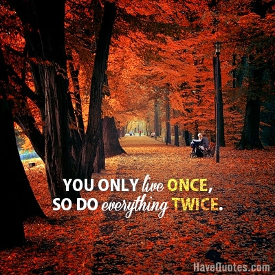You Only Live Once Quote Life Quotes Love Quotes Funny Quotes