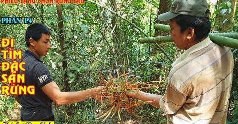 Ký Sự Phiêu Lãng Chốn Rừng Sâu - Tập 4 - Đi Tìm Đặc Sản Rừng Cho Bữa Cơm Trưa