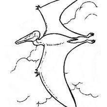 Dibujos Para Colorear Pteranodón Para Imprimir Eshellokidscom