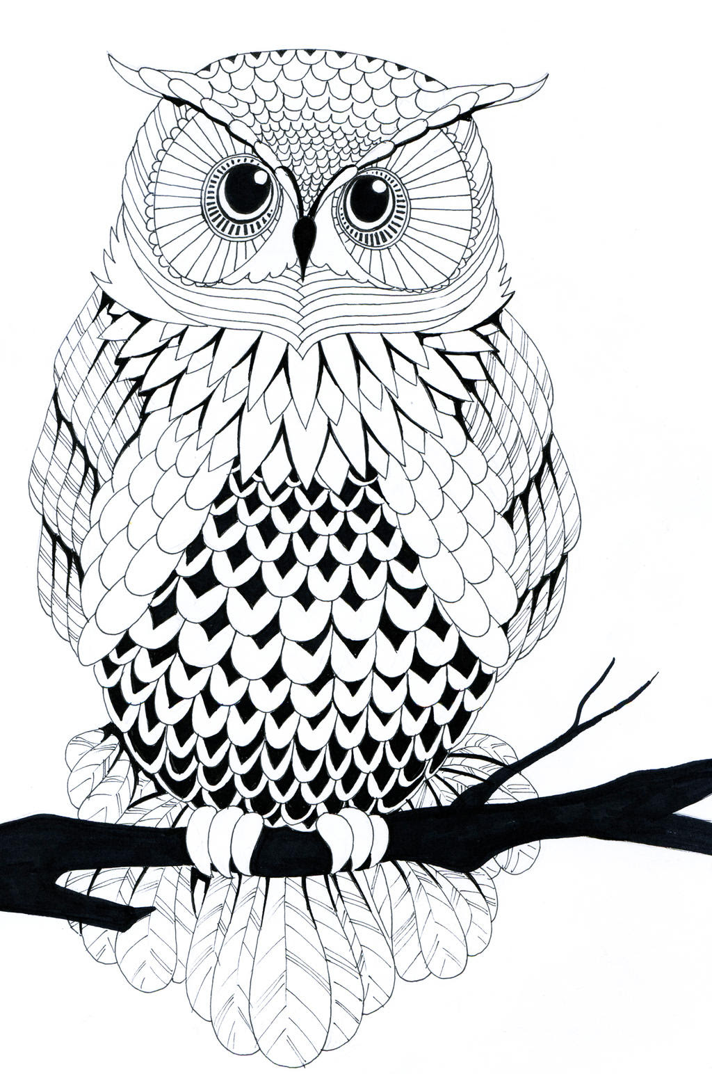 Black And White Owl Wallpaper