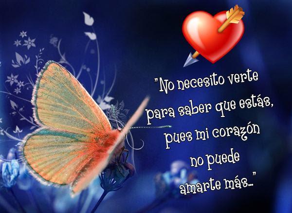 Frasesamor Imagenes De Mariposas Con Frases De Amor