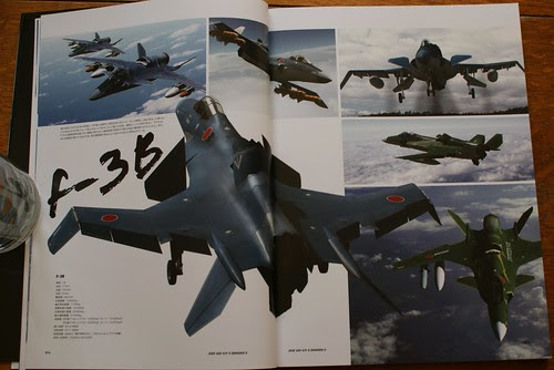 Ace Combat Master File - ASF-X SHINDEN II - 6