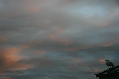 2010-03-02 Sunset 057