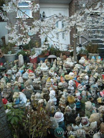 Garden gnomes in front of house