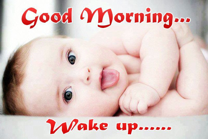 Top Good Morning Funny Quotes Sayings Good Morning Ket Qua Bong