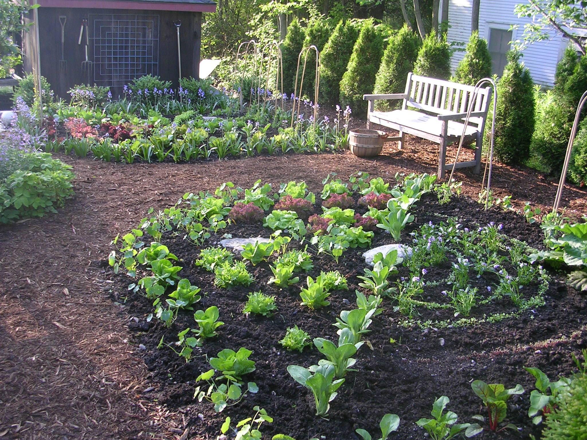 kitchen garden designer- Ellen Ecker Ogden