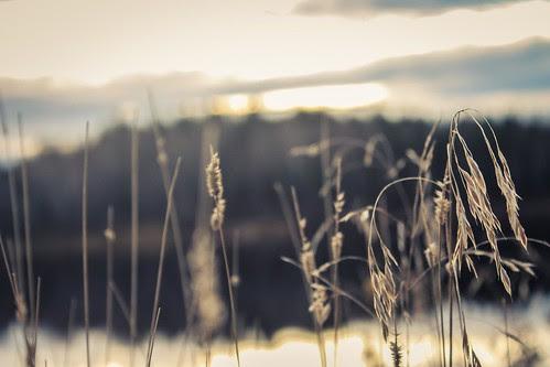 Photoby Titus Icebound
