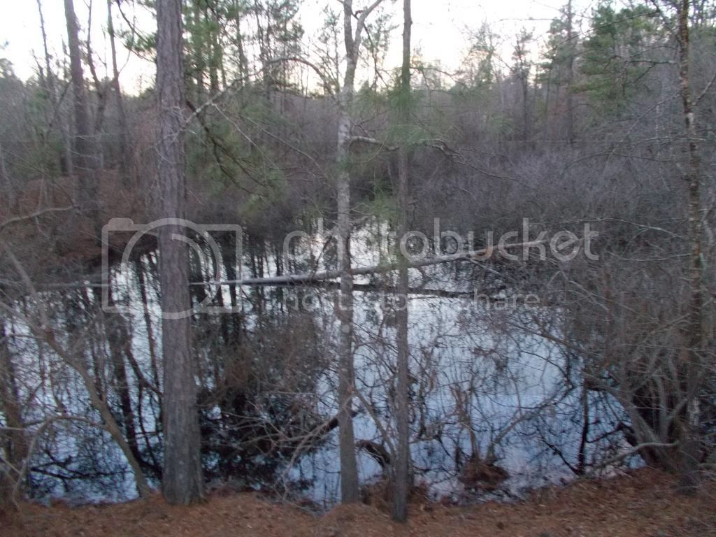 Cheap Texas Land on Craigslist: Awesome Ruins in Gladewater!