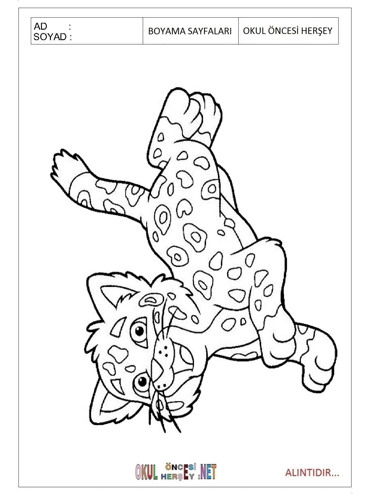 Jaguar Boyama Sayfaları