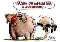 Elefante e avestruz