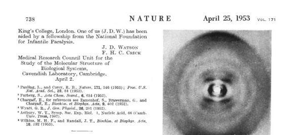 Η ιστορική δημοσίευση για την ανακάλυψη της διπλής έλικας του DNA στο Nature στις 25 (και όχι στις 15 όπως αναφέρεται στο κείμενο) Απριλίου 1953. Συγγραφείς ήταν οι  J.D. Watson και F.H.C. Crick (Ο Crick ήταν Φυσικός ...)