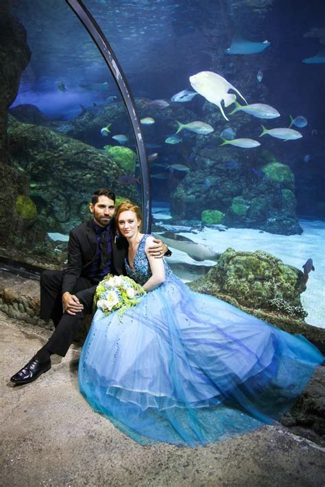 Downtown Aquarium Denver Weddings   Get Prices for Wedding