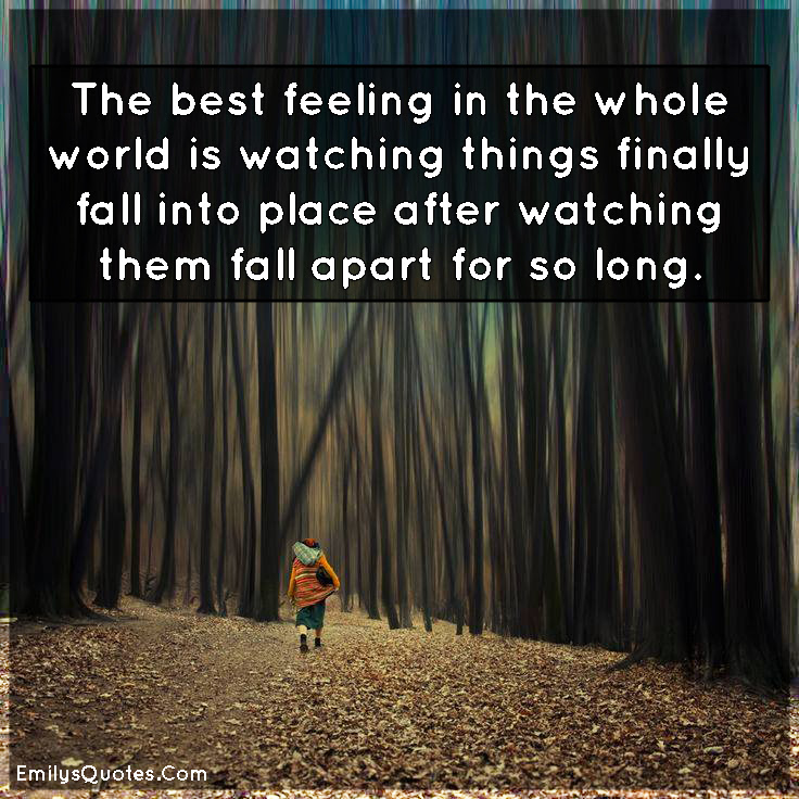 The Best Feeling In The Whole World Is Watching Things Finally Fall