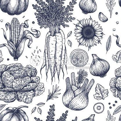 秋野菜のシームレスなパターン手書きヴィンテージ野菜ライン アートの