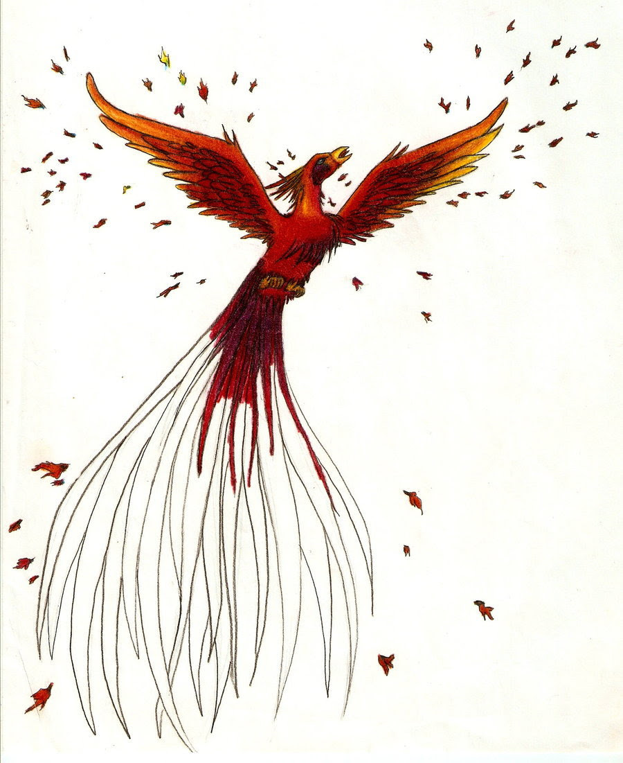 Phoenix Rising From The Ashes Drawing At Getdrawingscom Free For