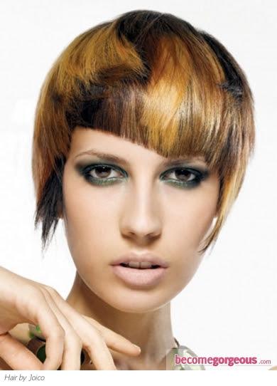 blonde hair highlights on brown hair. of lond hair and rown