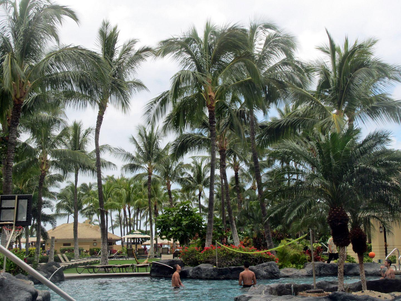 photo Hawaii94.jpg