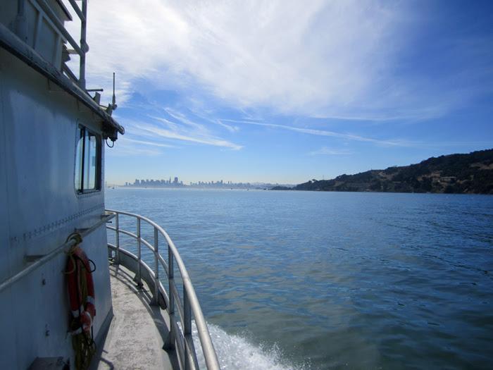 Fleet Week Cruising