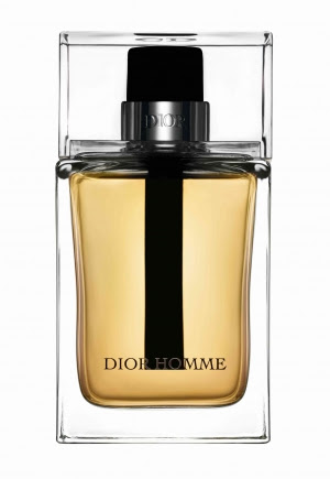Dior Homme Christian Dior Masculino