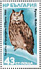 Eurasian Eagle-OwlBubo bubo